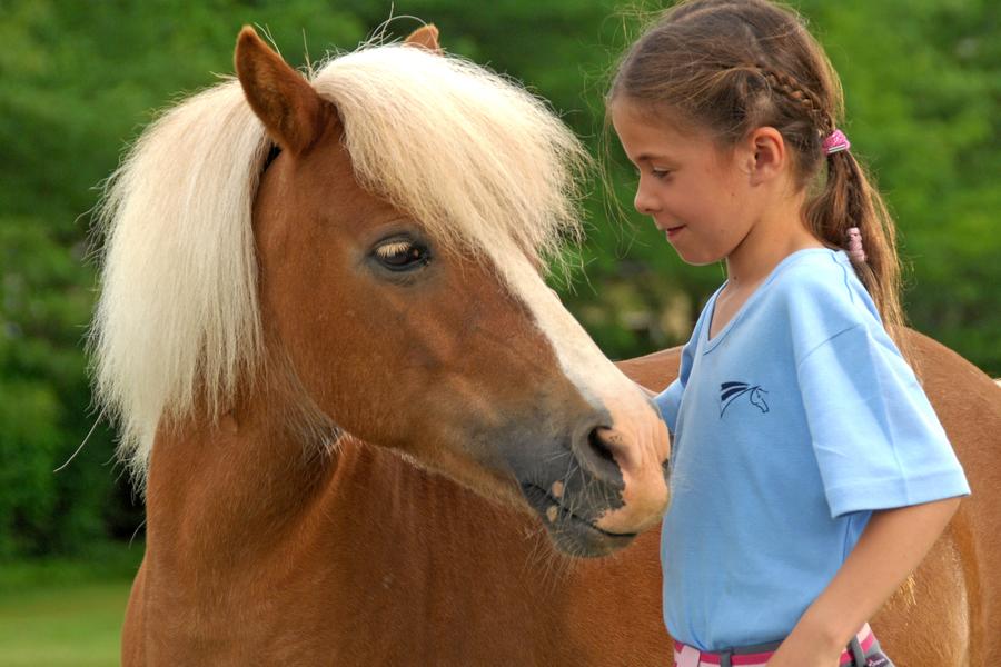 Quelles sont les raisons de l'engouement des enfants pour le poney ?